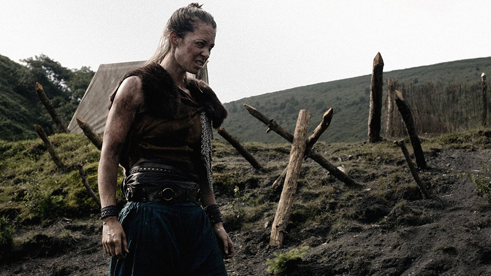 The Lost Viking  [2018]