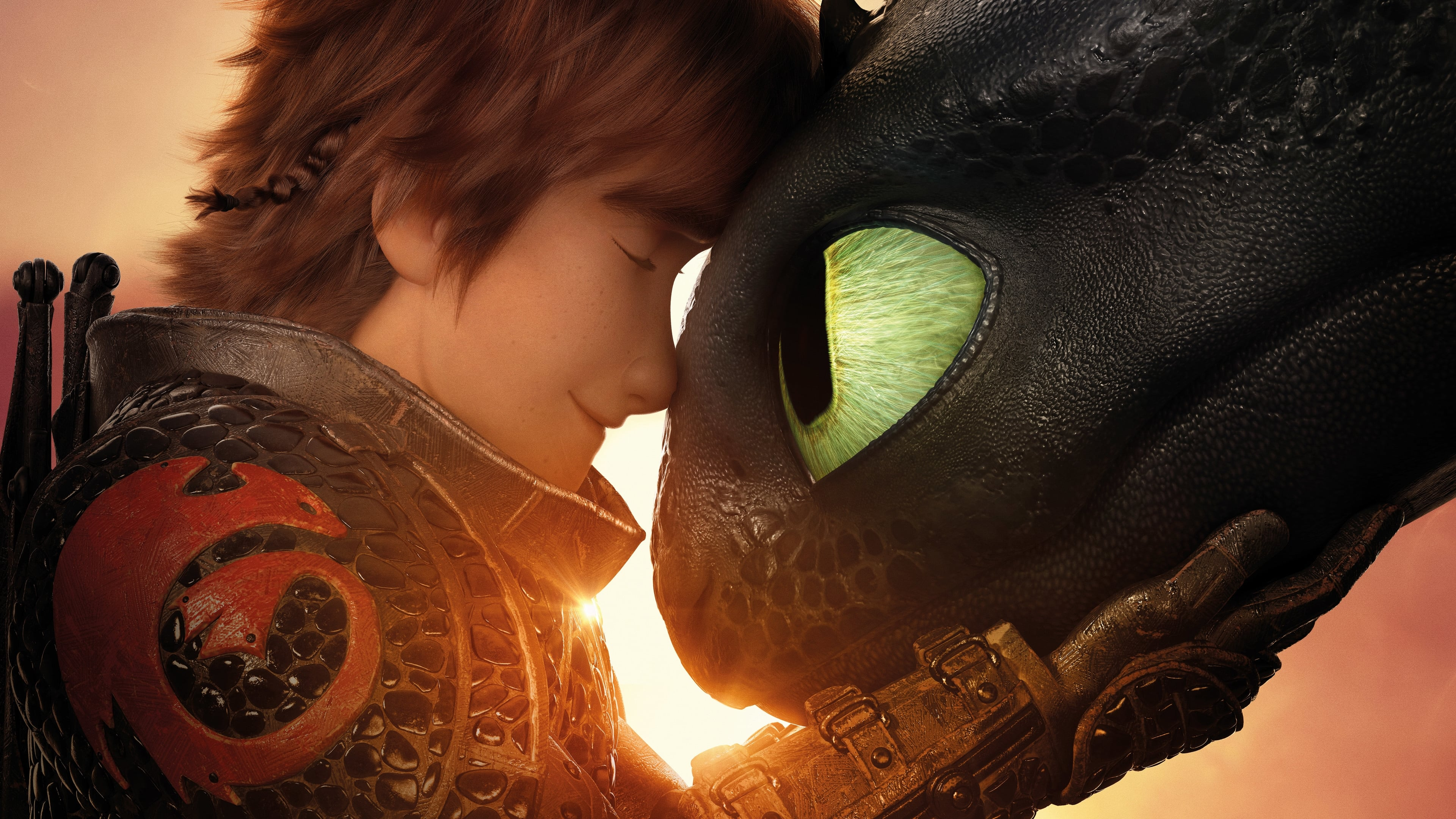 How to Train Your Dragon: The Hidden World [2019]
