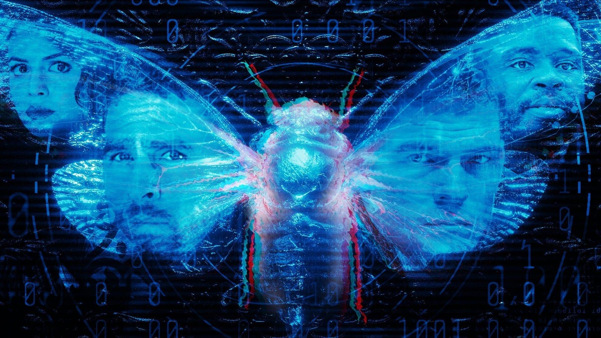 Dark Web Cicada 3301  [2021]