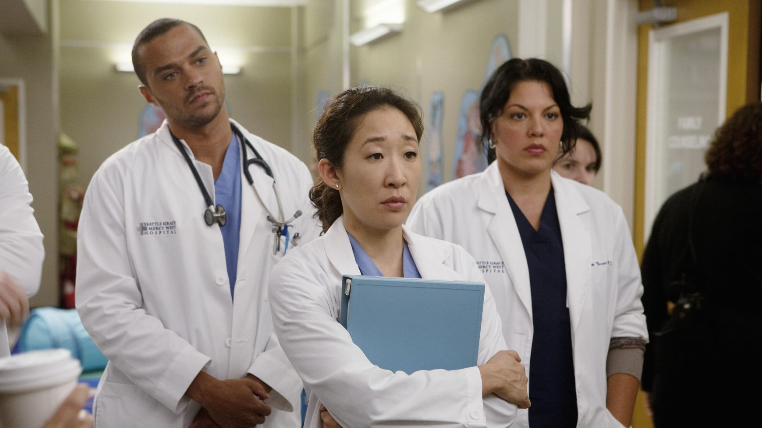 Grey's Anatomy Season 6 :Episode 8  Invest In Love