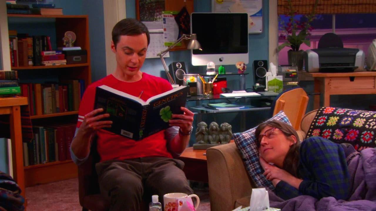 The Big Bang Theory Season 6 :Episode 10  The Fish Guts Displacement