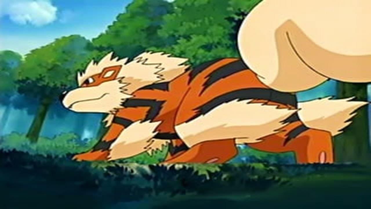 Pokémon Season 8 :Episode 47  On Cloud Arcanine