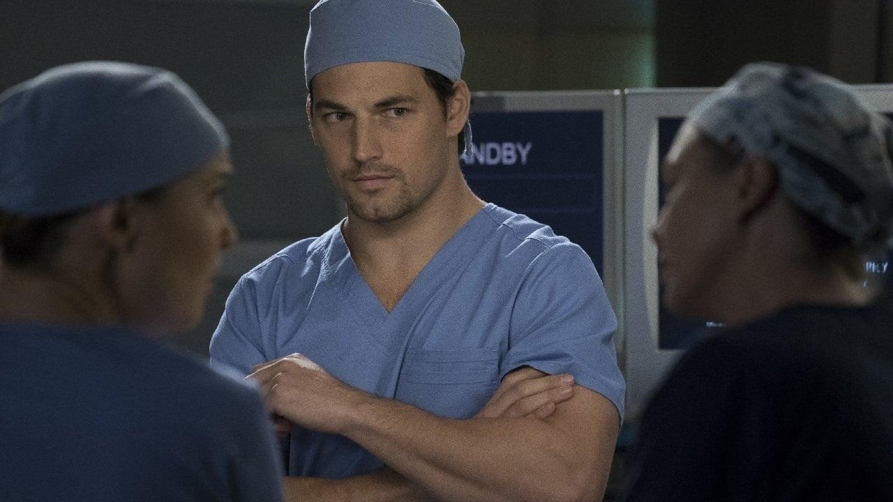 Grey's Anatomy Season 14 :Episode 19  Beautiful Dreamer