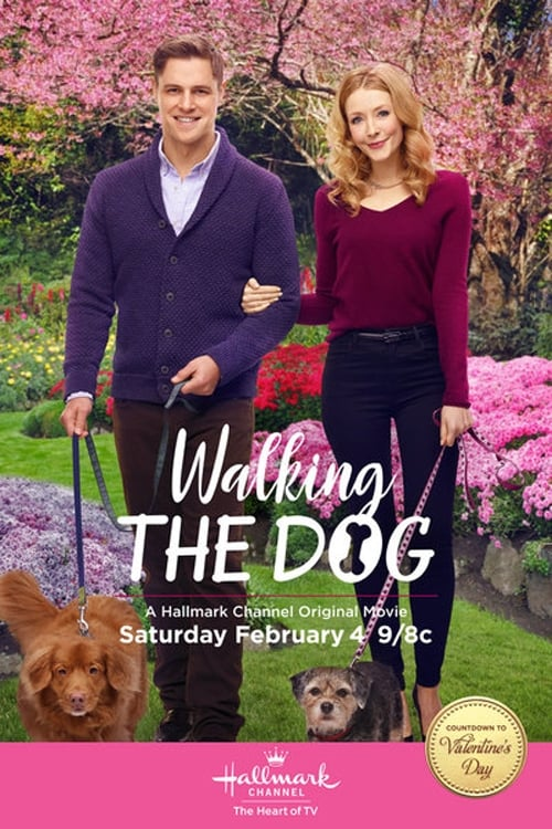 Dvd Hallmark Walking The Dog