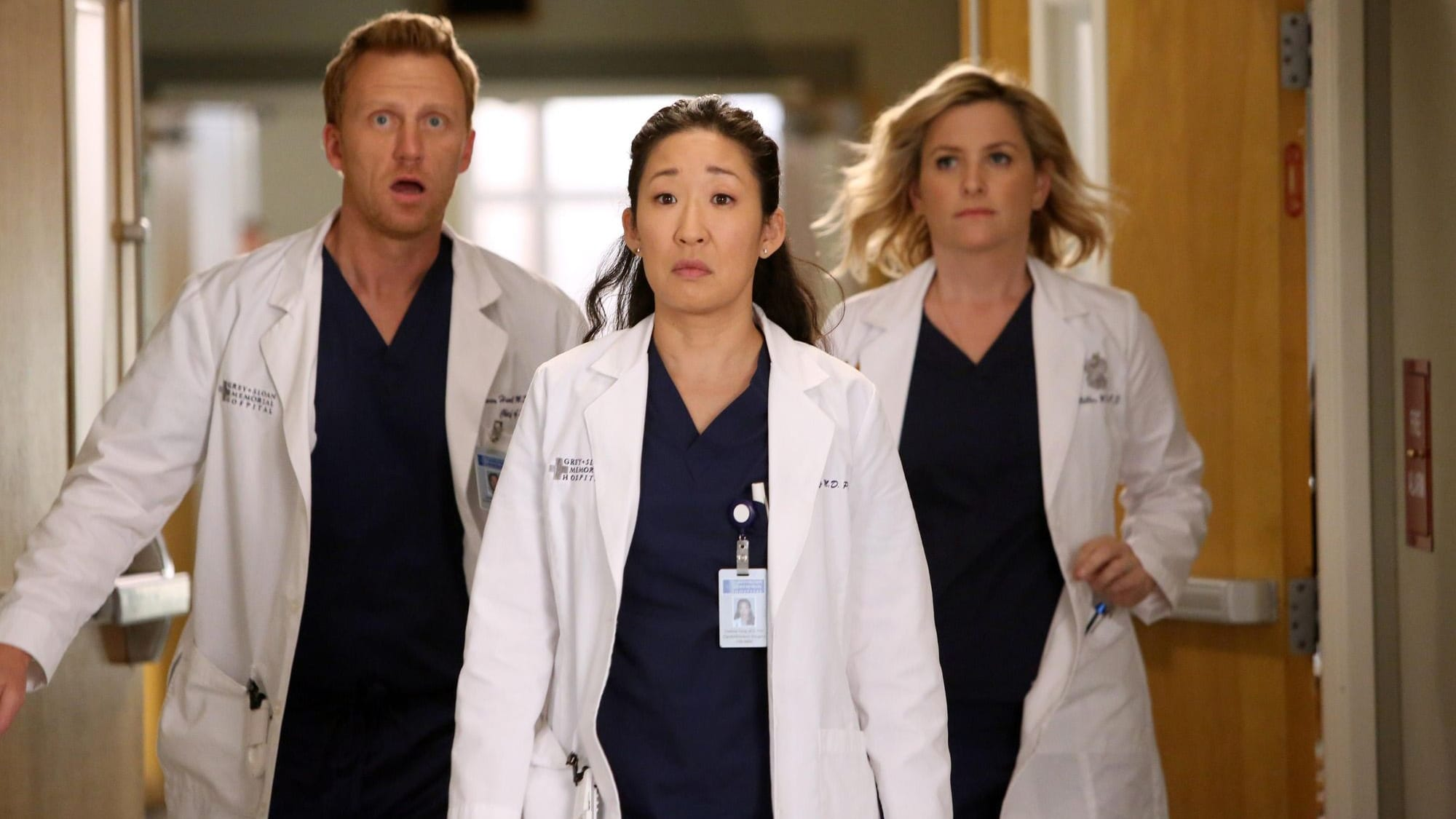 Grey's Anatomy Season 10 :Episode 19  Der Harper Avery Award