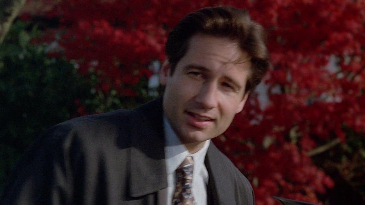The X-Files Season 1 :Episode 11  Eve