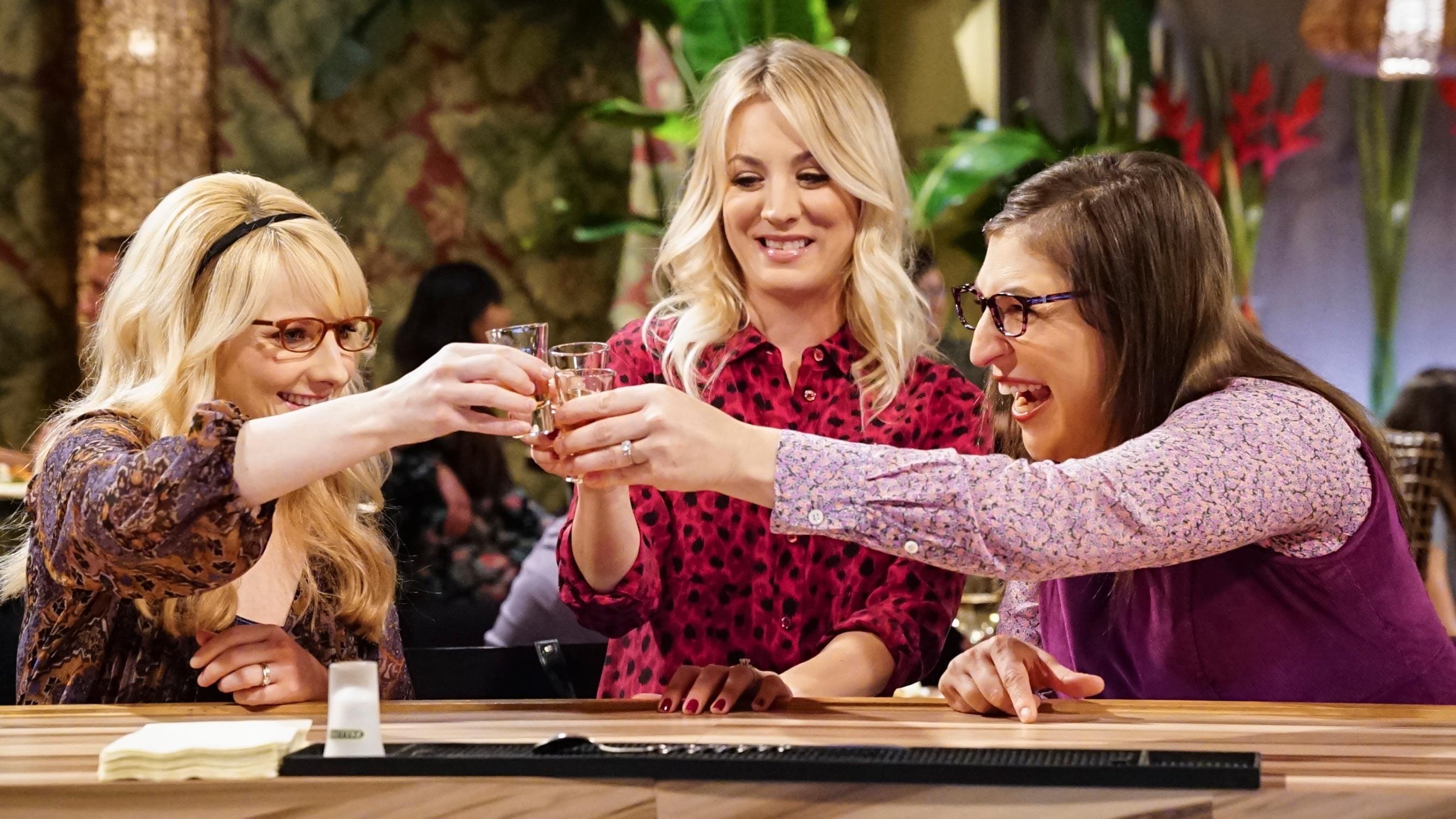 The Big Bang Theory Season 11 : The Reclusive Potential