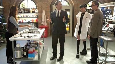 NCIS Season 8 :Episode 19  Tell-All