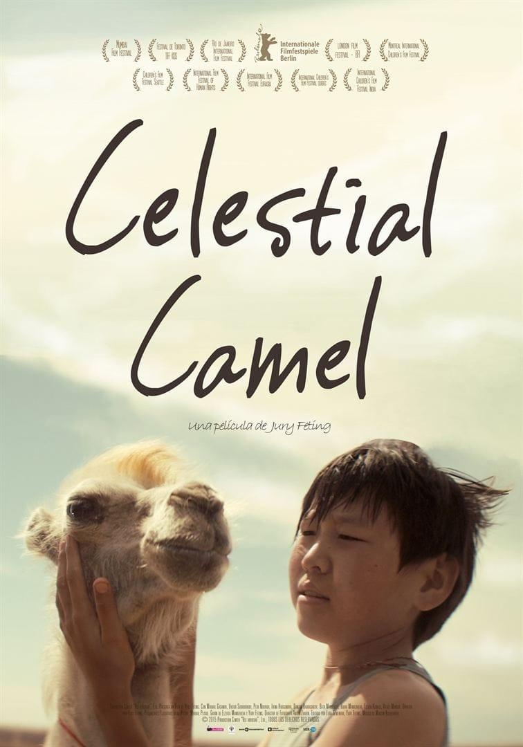 Póster Celestial Camel