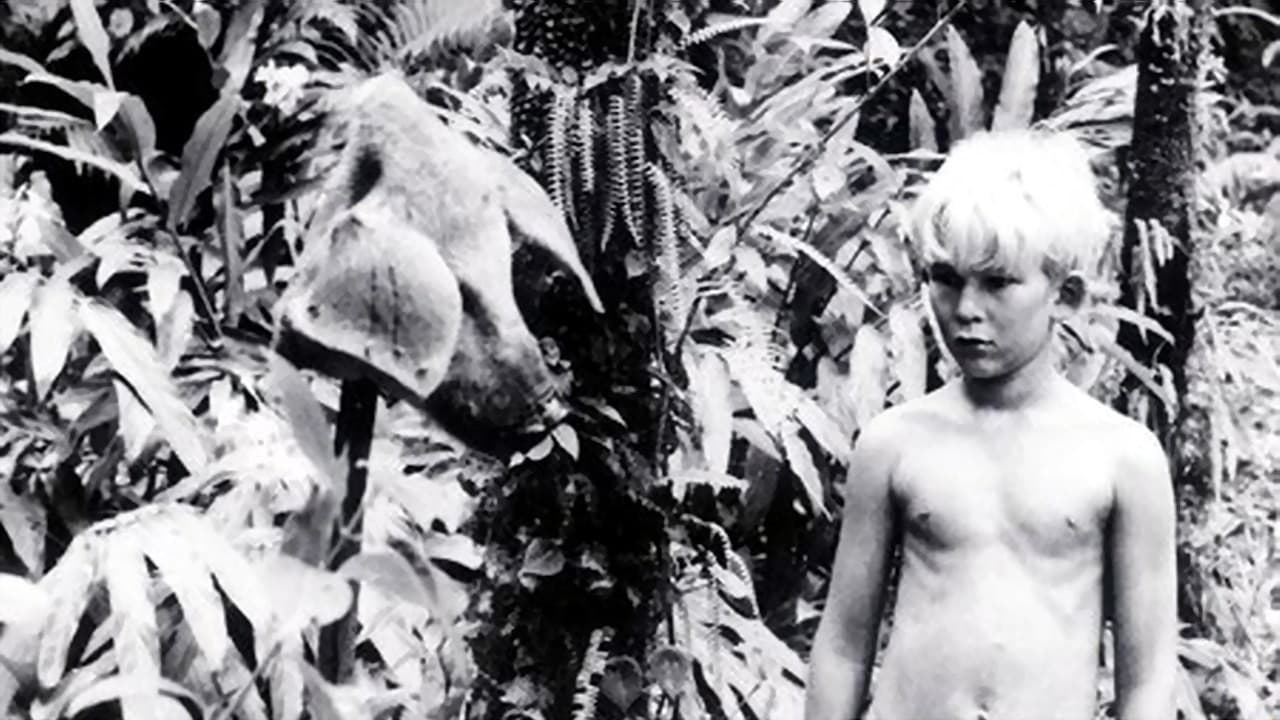 an analysis of the film lord of the flies by peter brook You can't question peter brook's bravery in the way he tackled william golding's  chilling novel lord of the flies  an australian teachers of media study guide  and an interview with brook, in which he reveals the budget was.