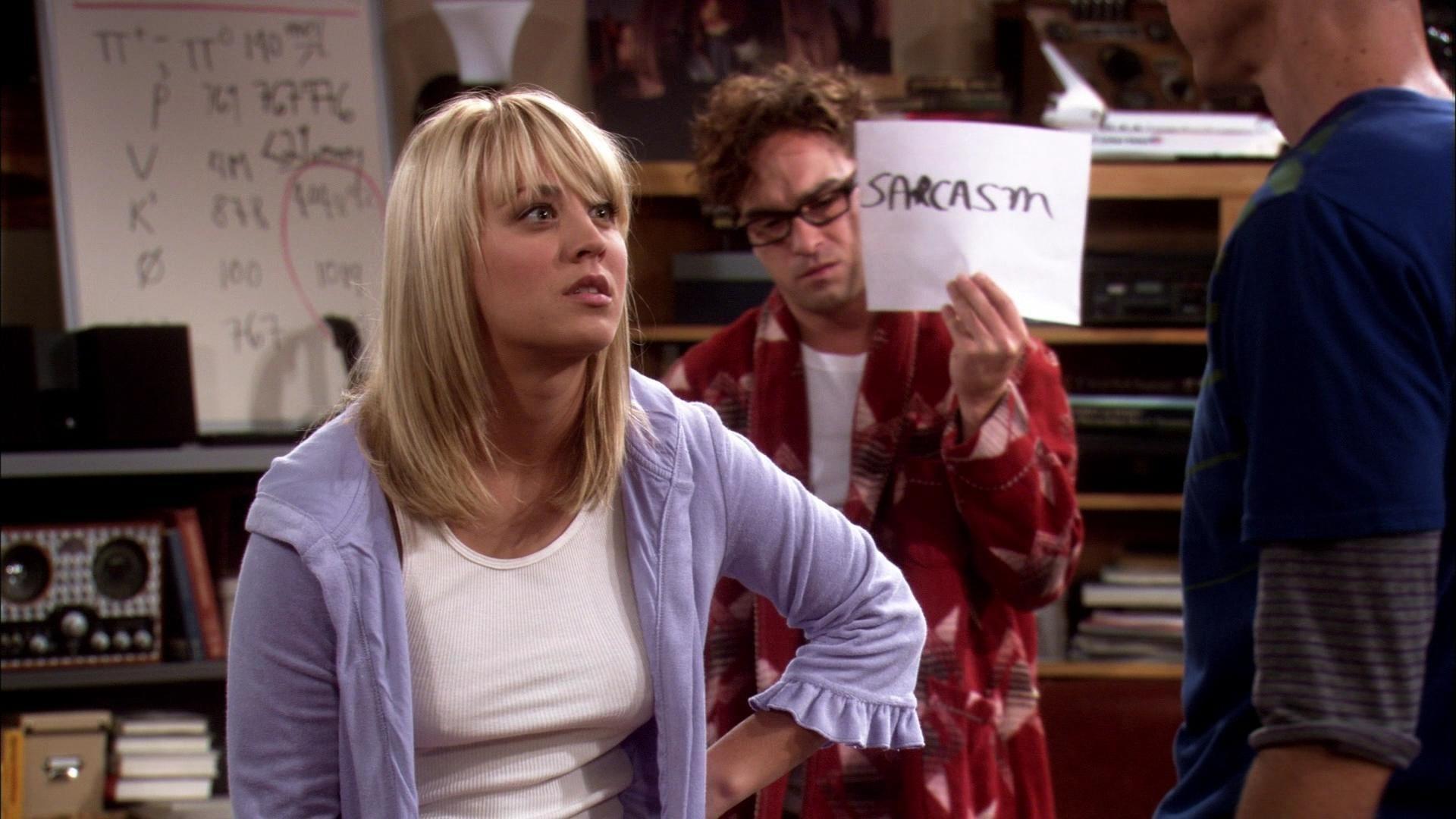 The Big Bang Theory Season 1 :Episode 2  The Big Bran Hypothesis
