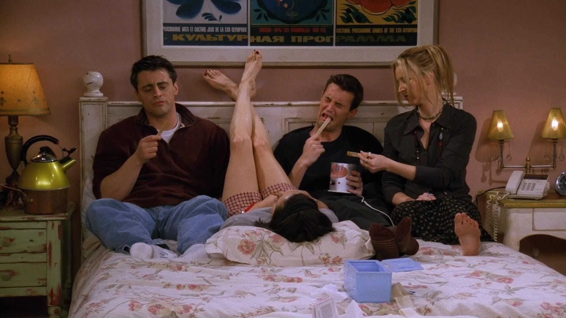 Friends Season 3 :Episode 16  The One the Morning After (2)