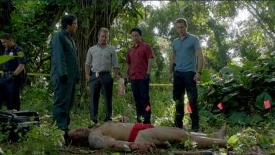 Hawaii Five-0 - Season 2 Episode 17 : Defender