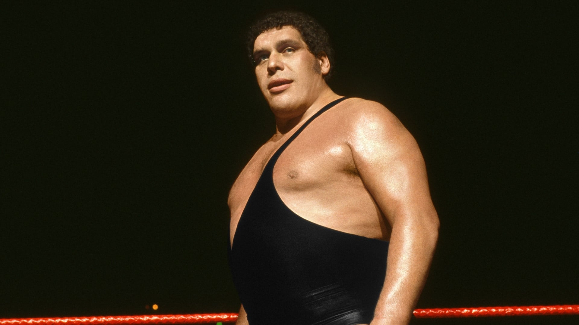 Image Result For Andre The Giant