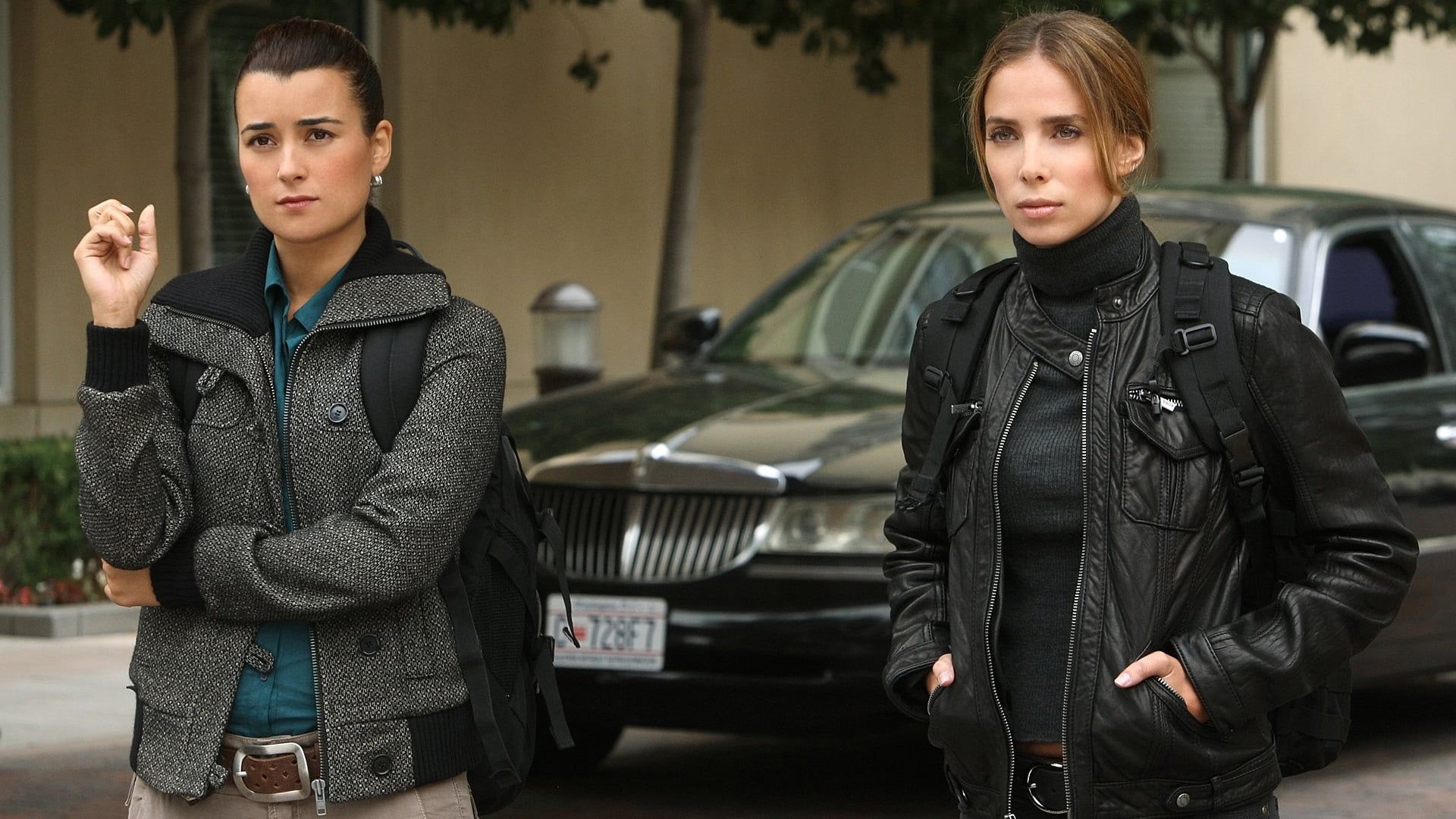 NCIS Season 8 :Episode 8  Enemies Foreign (1)