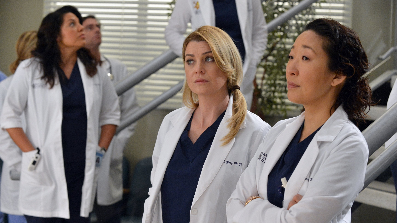 Grey's Anatomy - Season 10 Episode 14 : You've Got to Hide Your Love Away