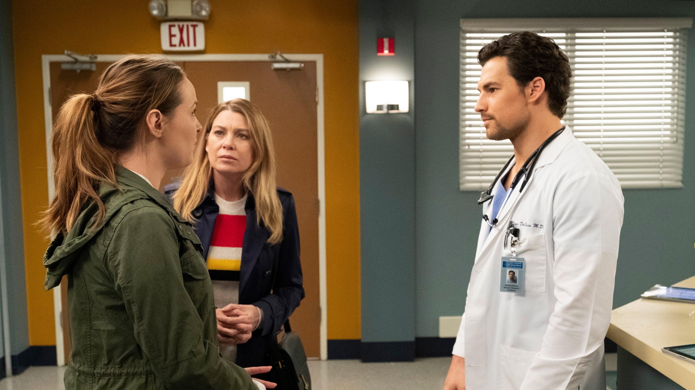 Grey's Anatomy Season 15 :Episode 24  Drawn to the Blood