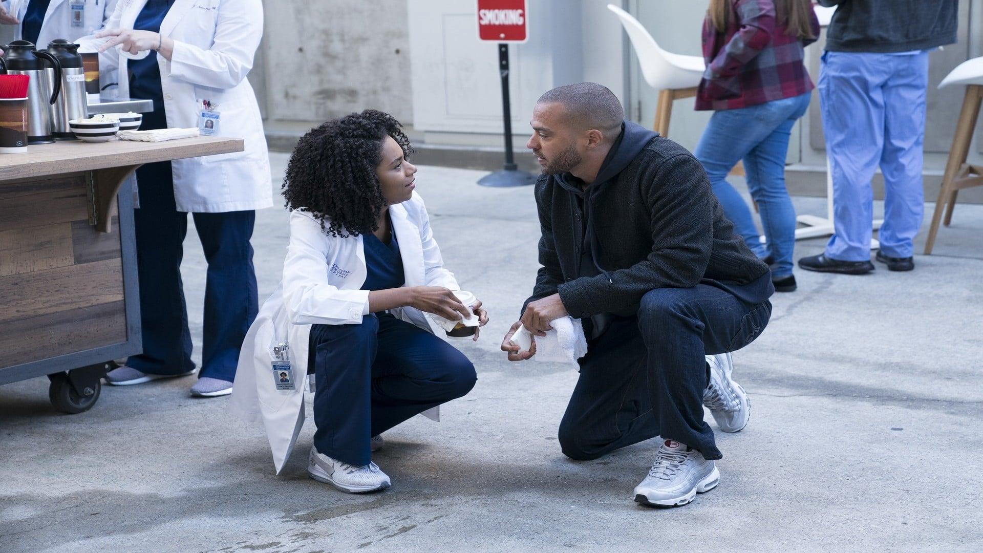 Grey's Anatomy Season 14 :Episode 15  Old Scars, Future Hearts