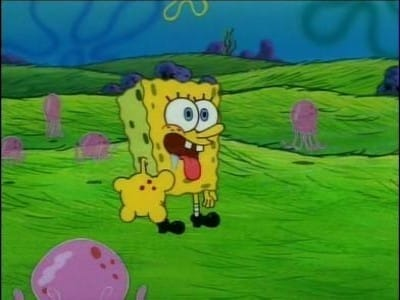 SpongeBob SquarePants Season 1 :Episode 18  Nature Pants