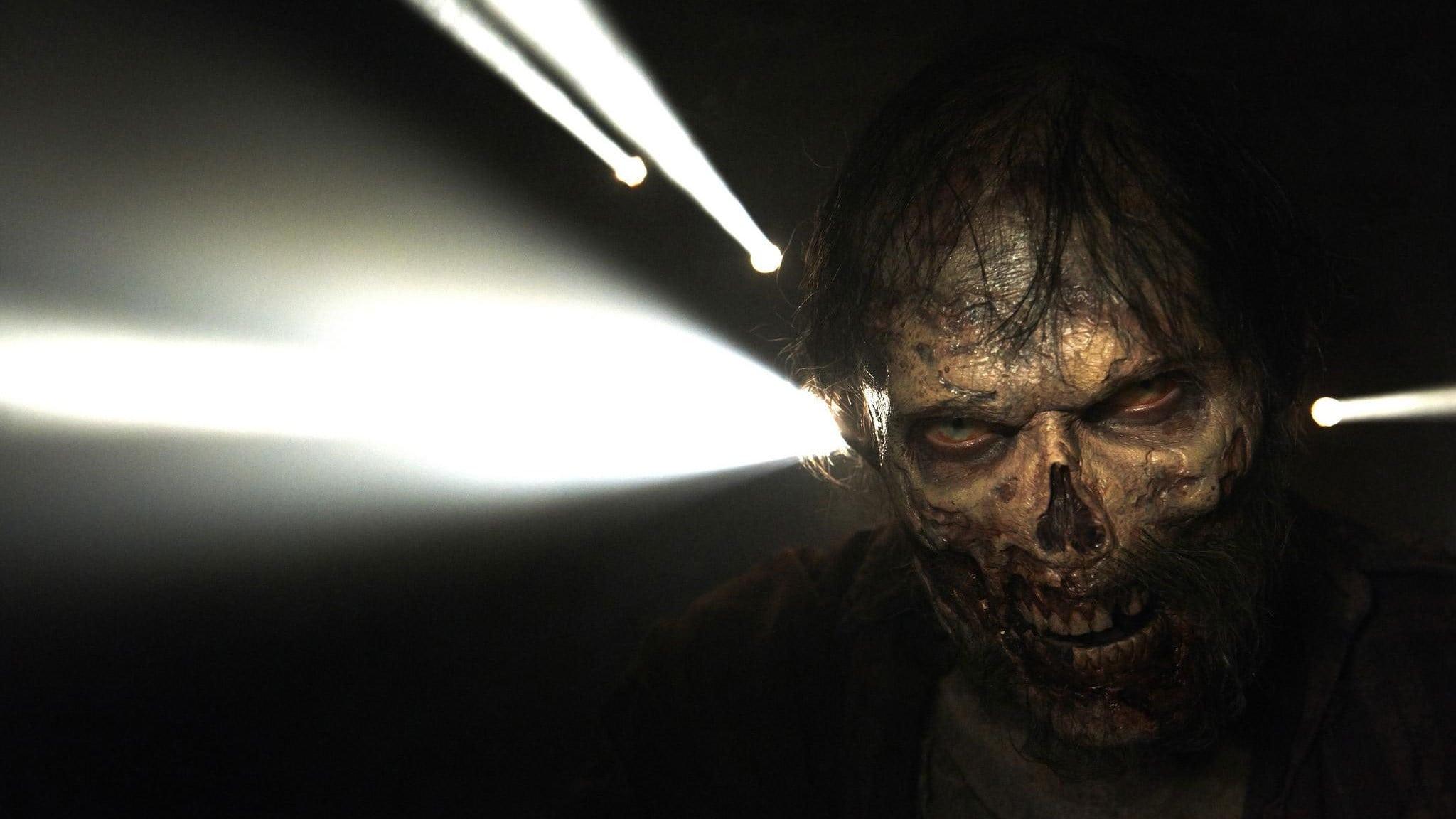 The Walking Dead – Saison 5 Streaming HD