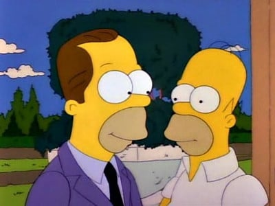 The Simpsons Season 2 : Oh Brother, Where Art Thou?