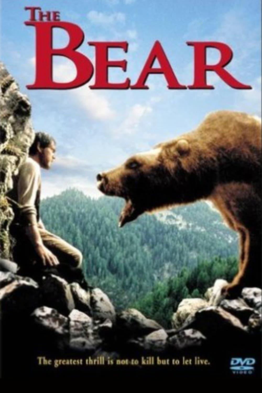про медведь фильм
