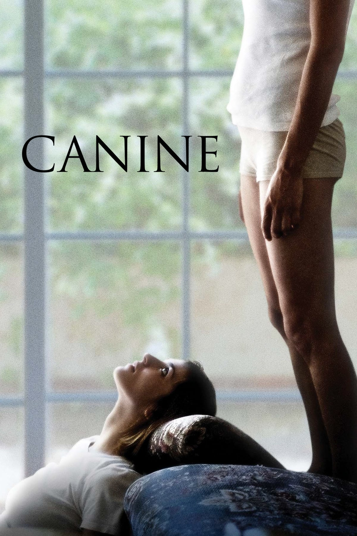 film canine 2009