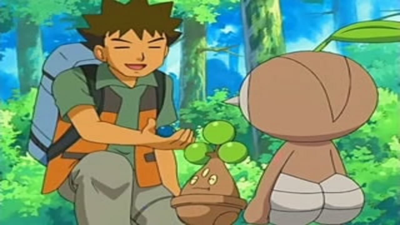 Pokémon Season 10 :Episode 14  Leave it to Brocko!