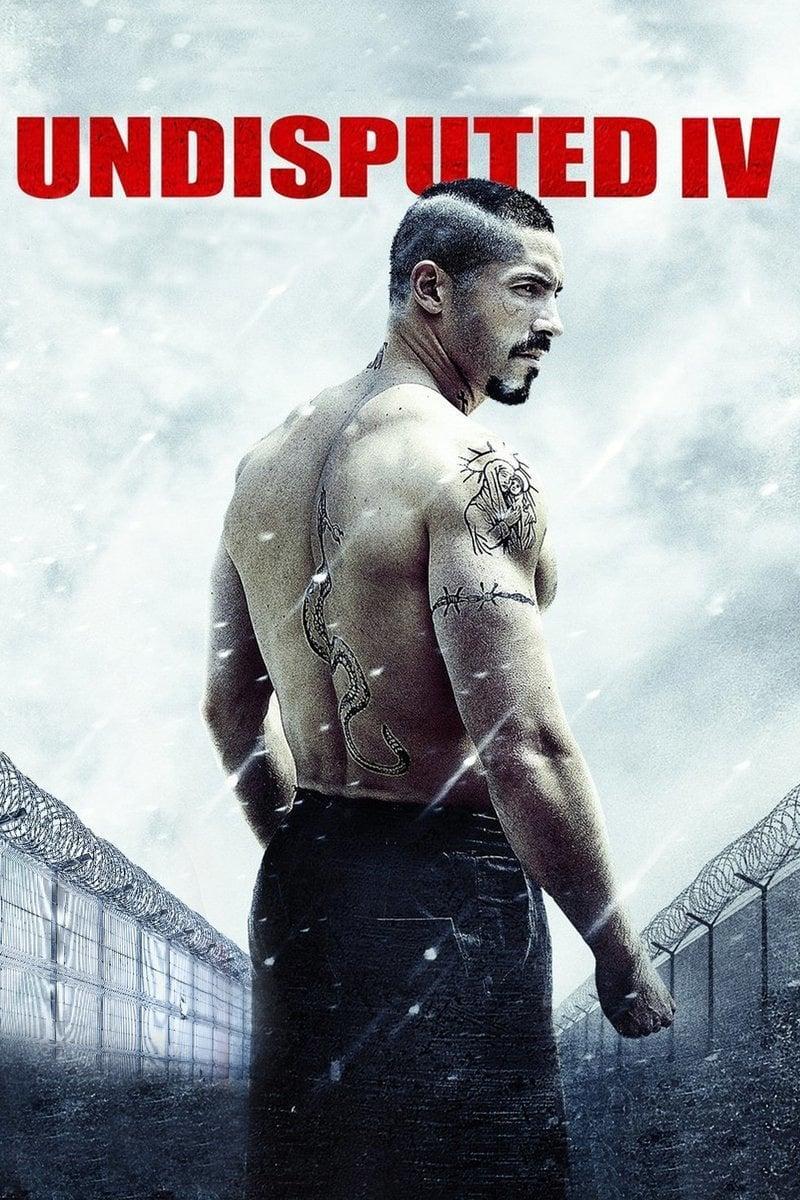 boyka  undisputed iv  2016   u2022 movies film
