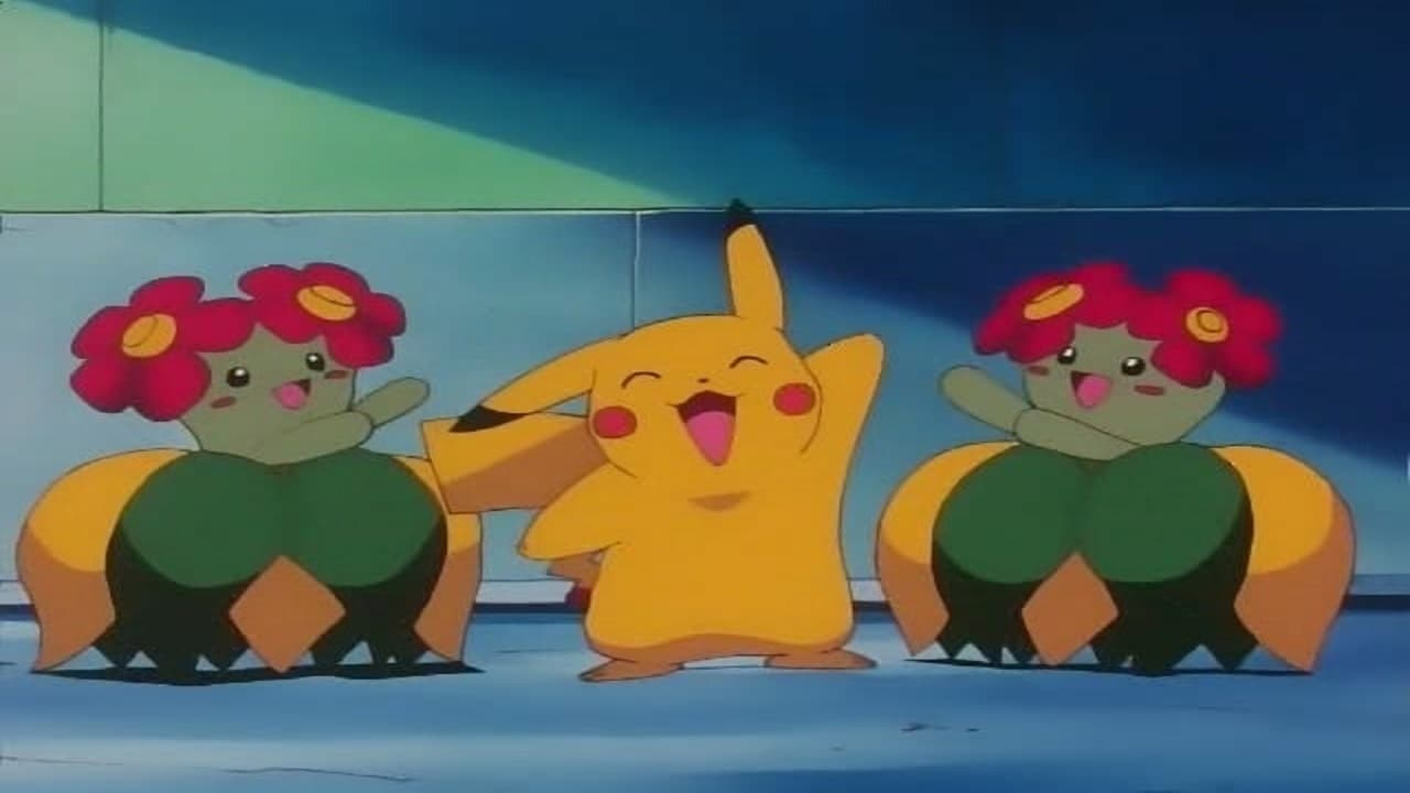 Pokémon Season 3 :Episode 6  Flower Power