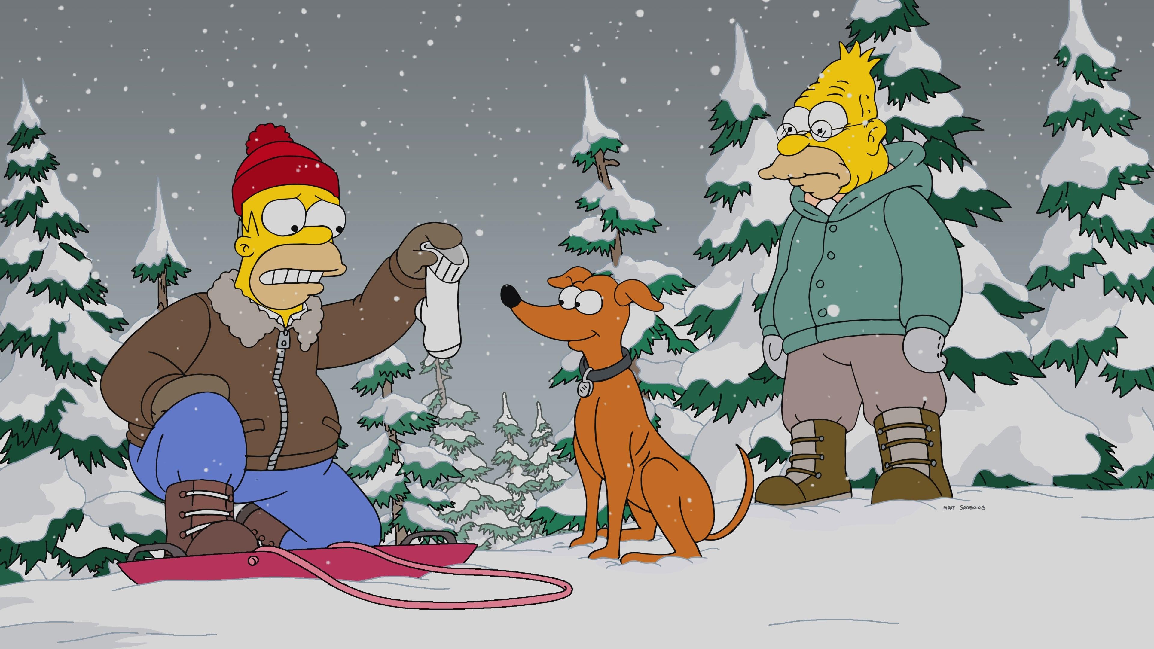 Die Simpsons Season 29 :Episode 9  Gone Boy