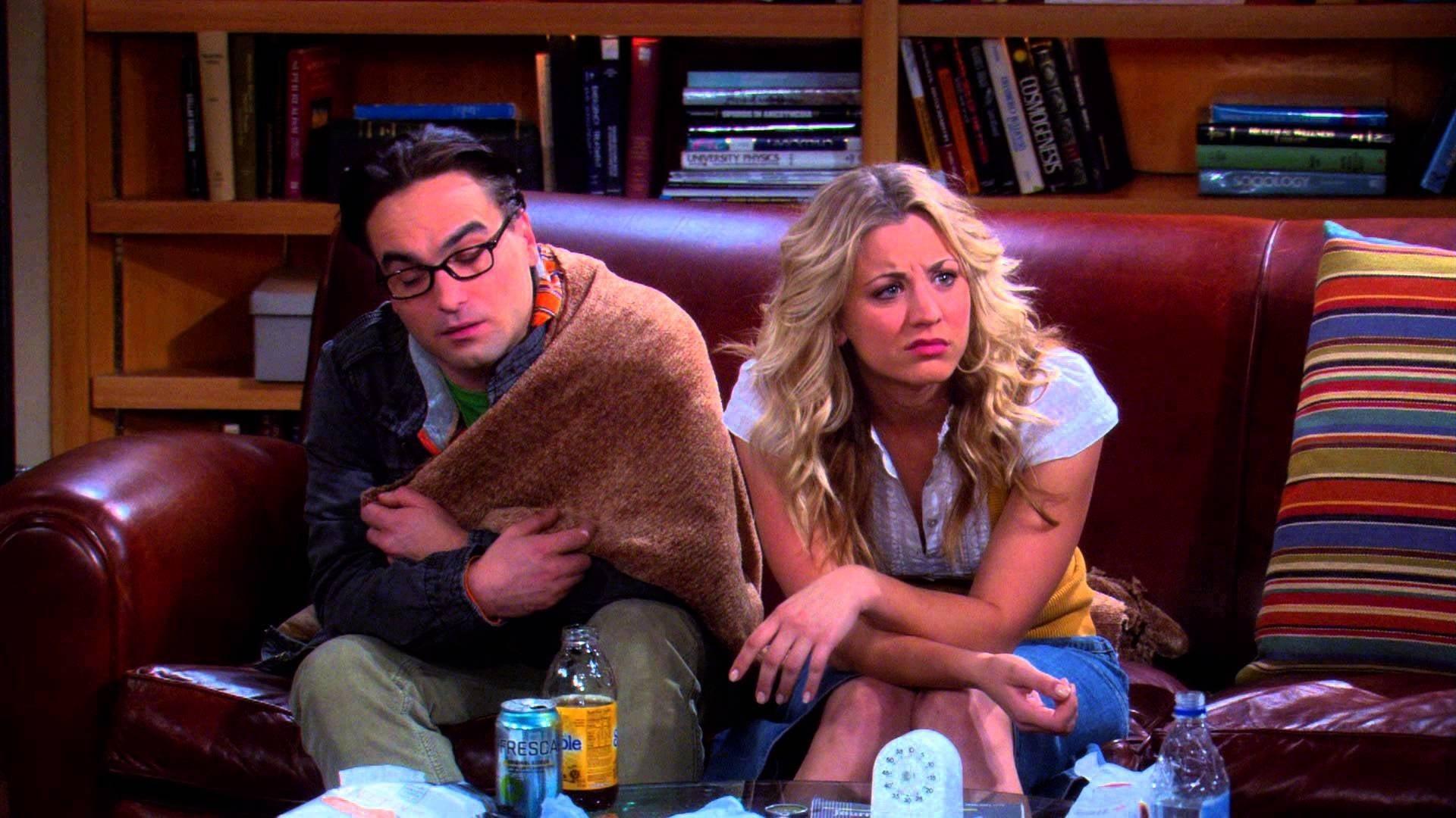 The Big Bang Theory Season 3 : The Bozeman Reaction
