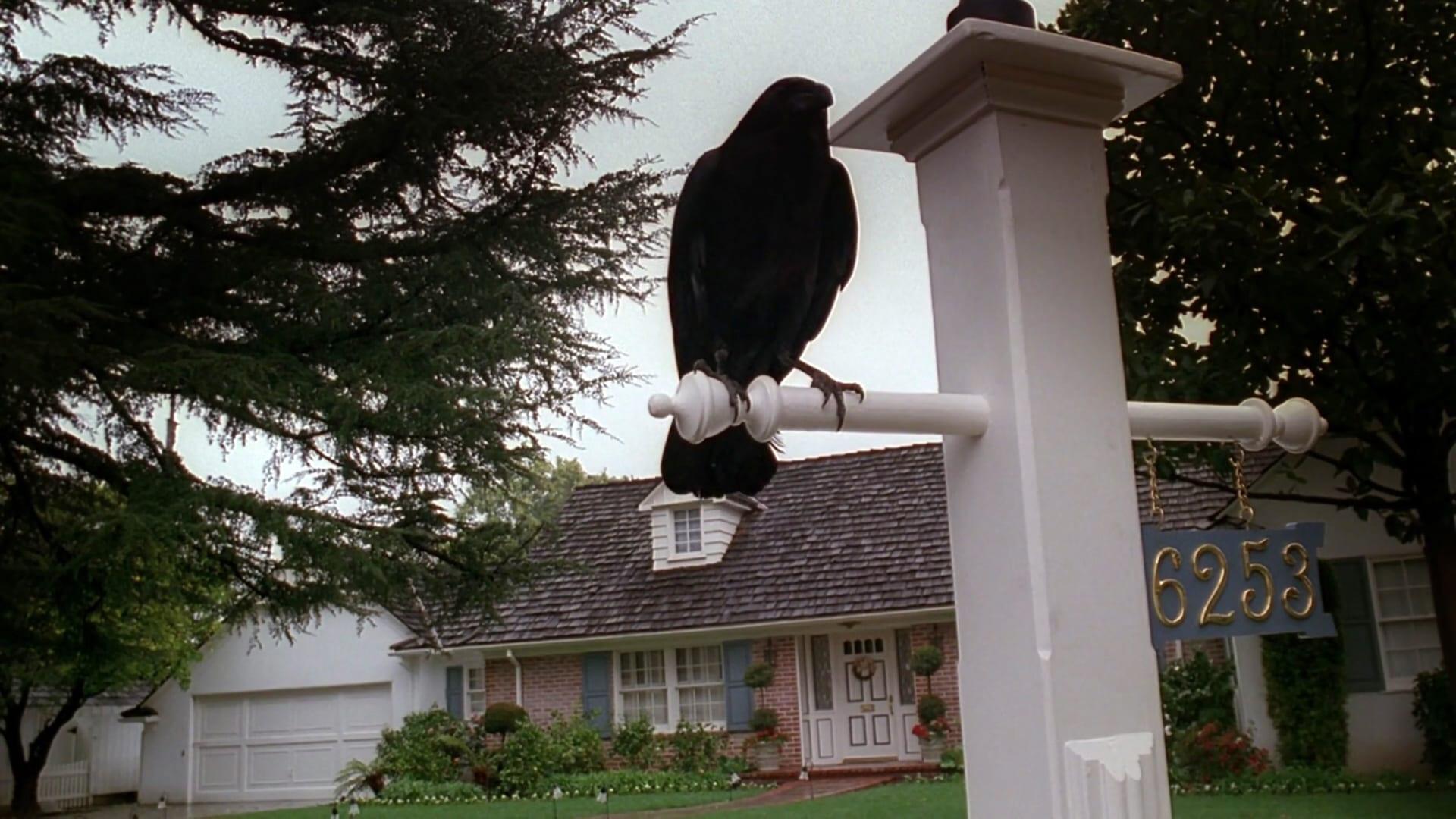 The X-Files Season 7 :Episode 16  Chimera