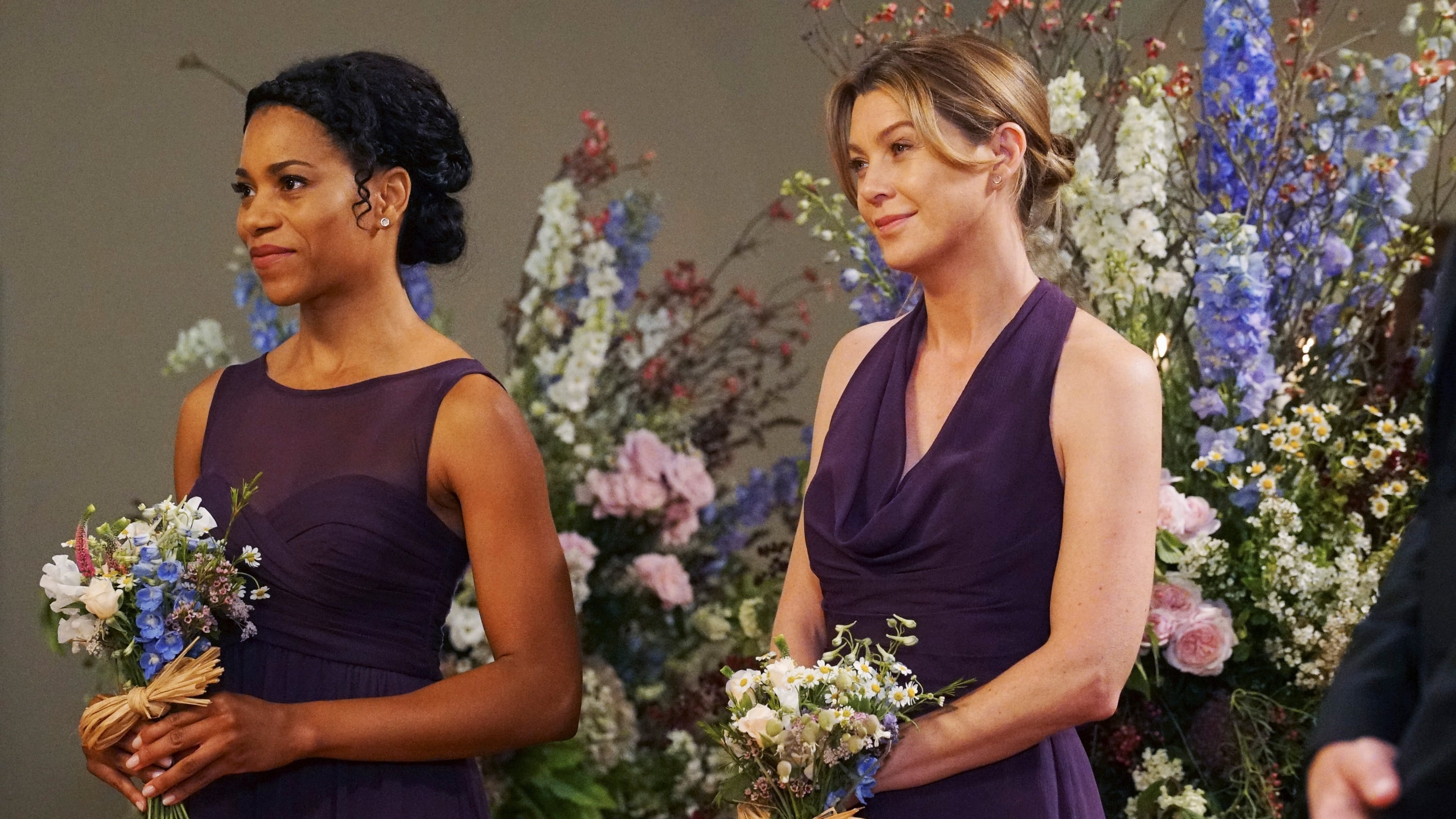 Grey's Anatomy Season 12 :Episode 24  Family Affair