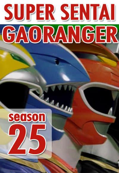 Super Sentai Season 25