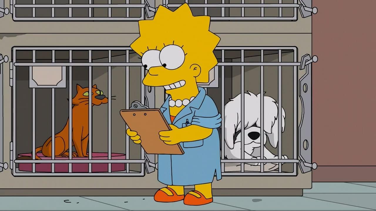 Die Simpsons Season 27 :Episode 15  Lisa und das liebe Vieh