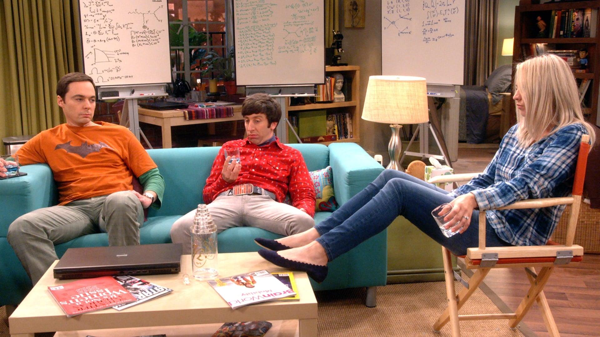 The Big Bang Theory Season 11 : The Retraction Reaction