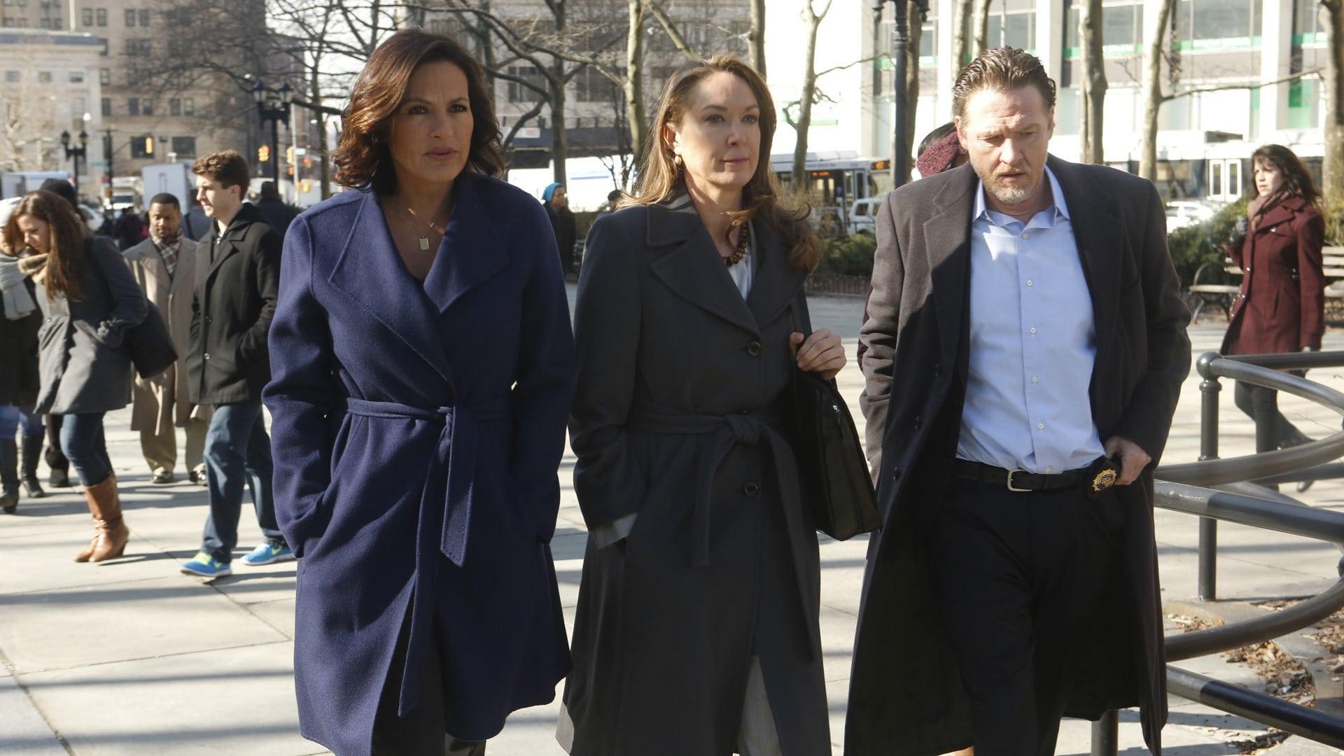Law & Order: Special Victims Unit - Season 15 Episode 21 : Post-Mortem Blues