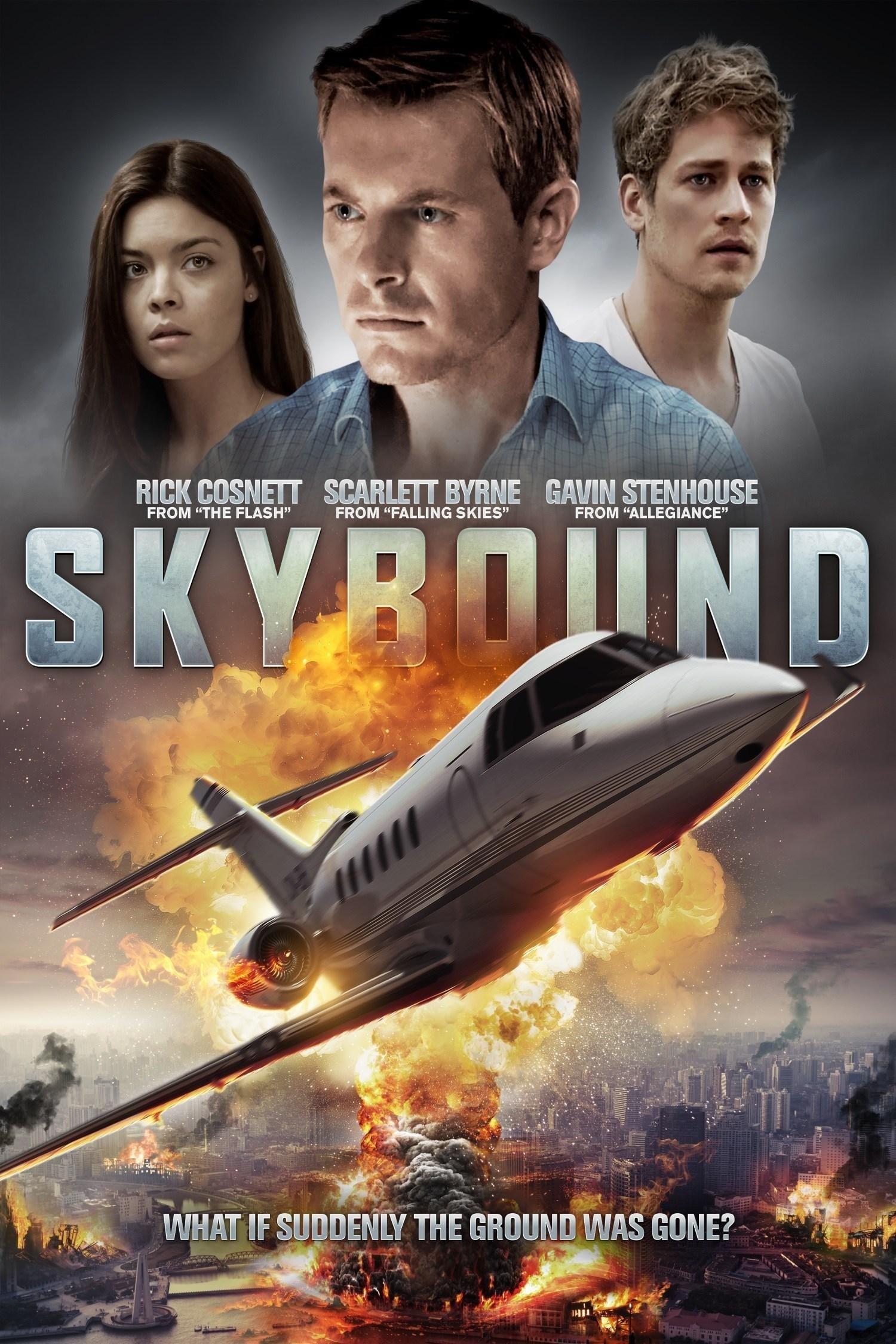 Póster Skybound