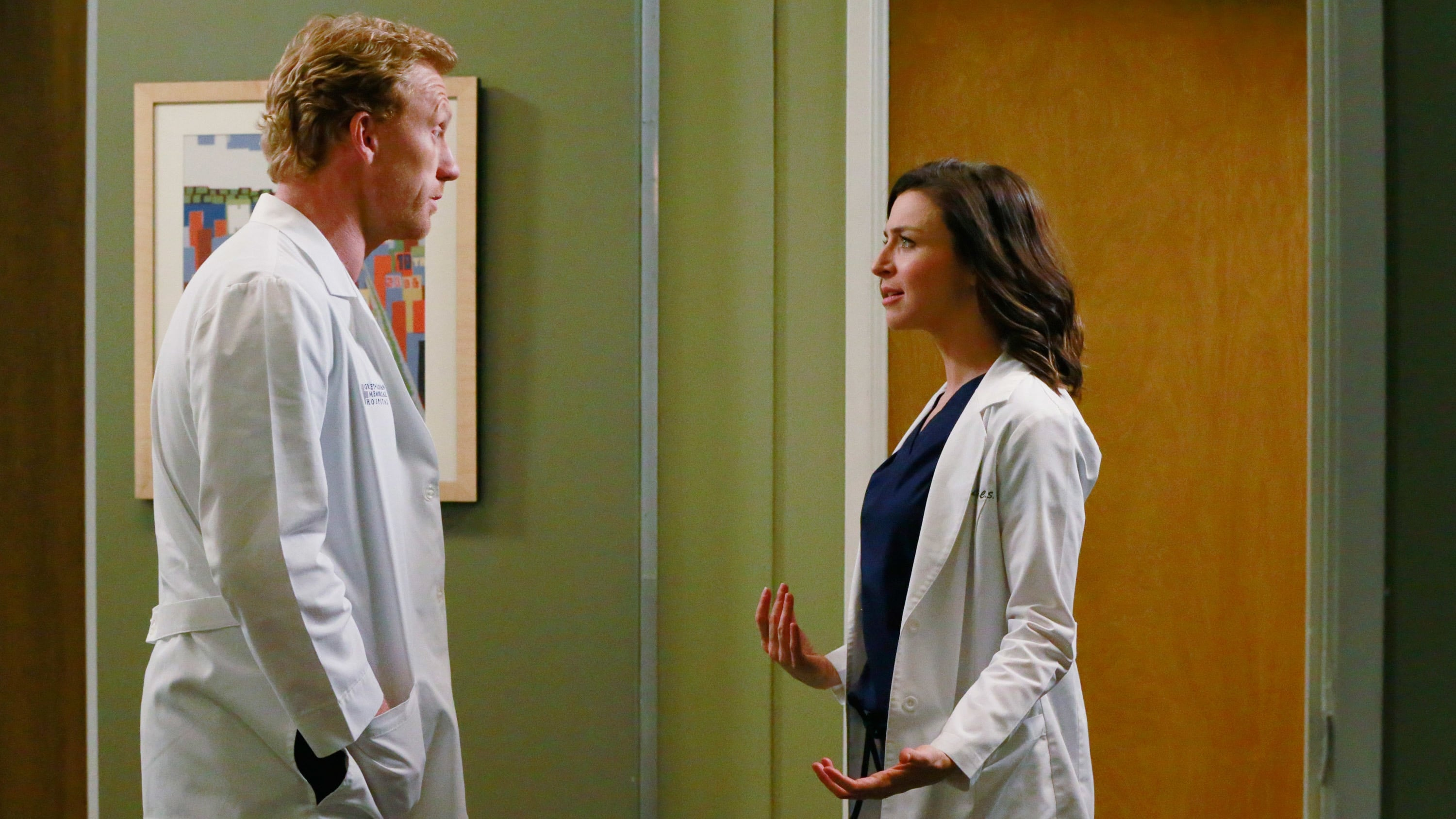 Grey's Anatomy Season 11 :Episode 20  One Flight Down
