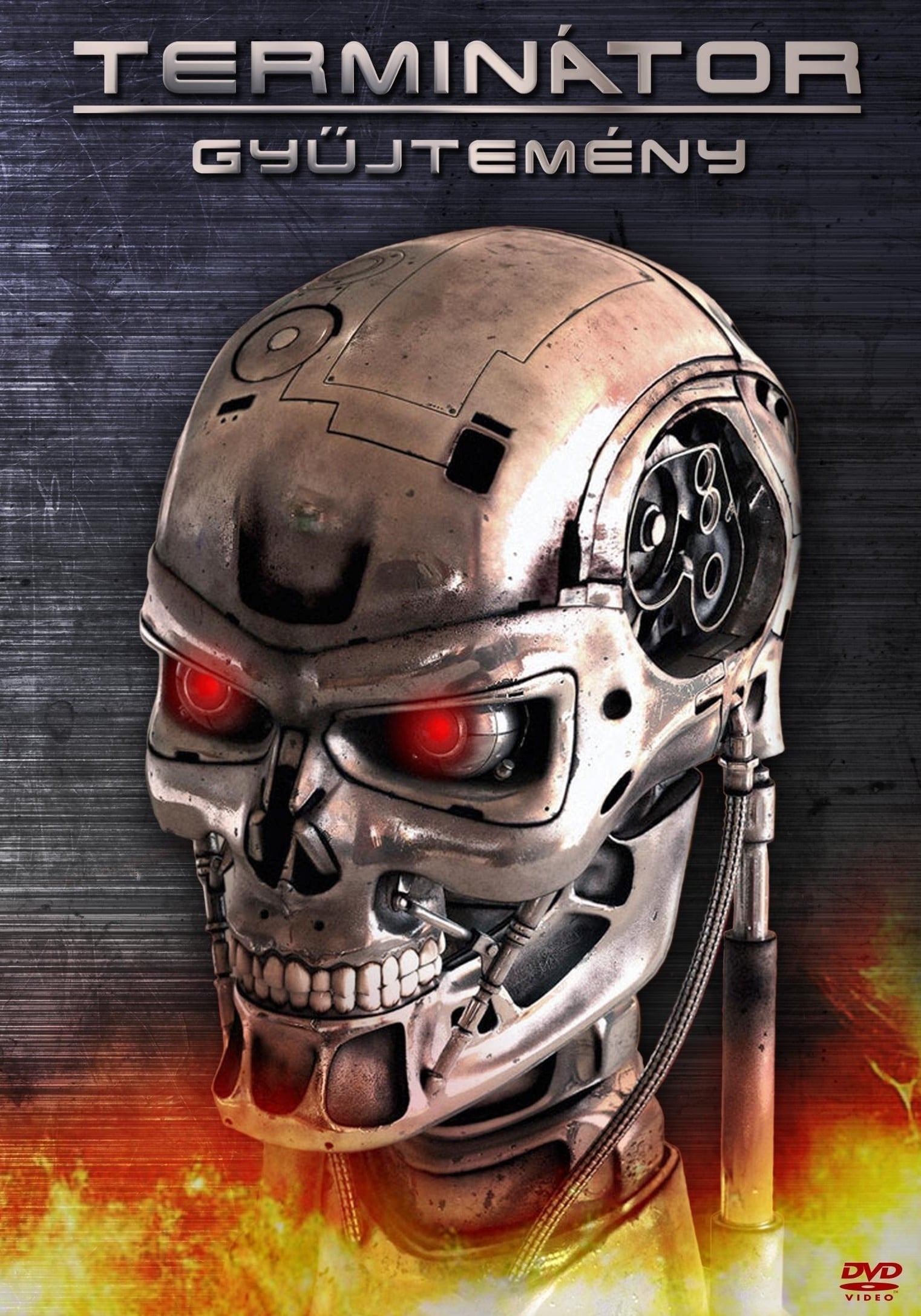All movies from The Terminator Collection saga are on ...