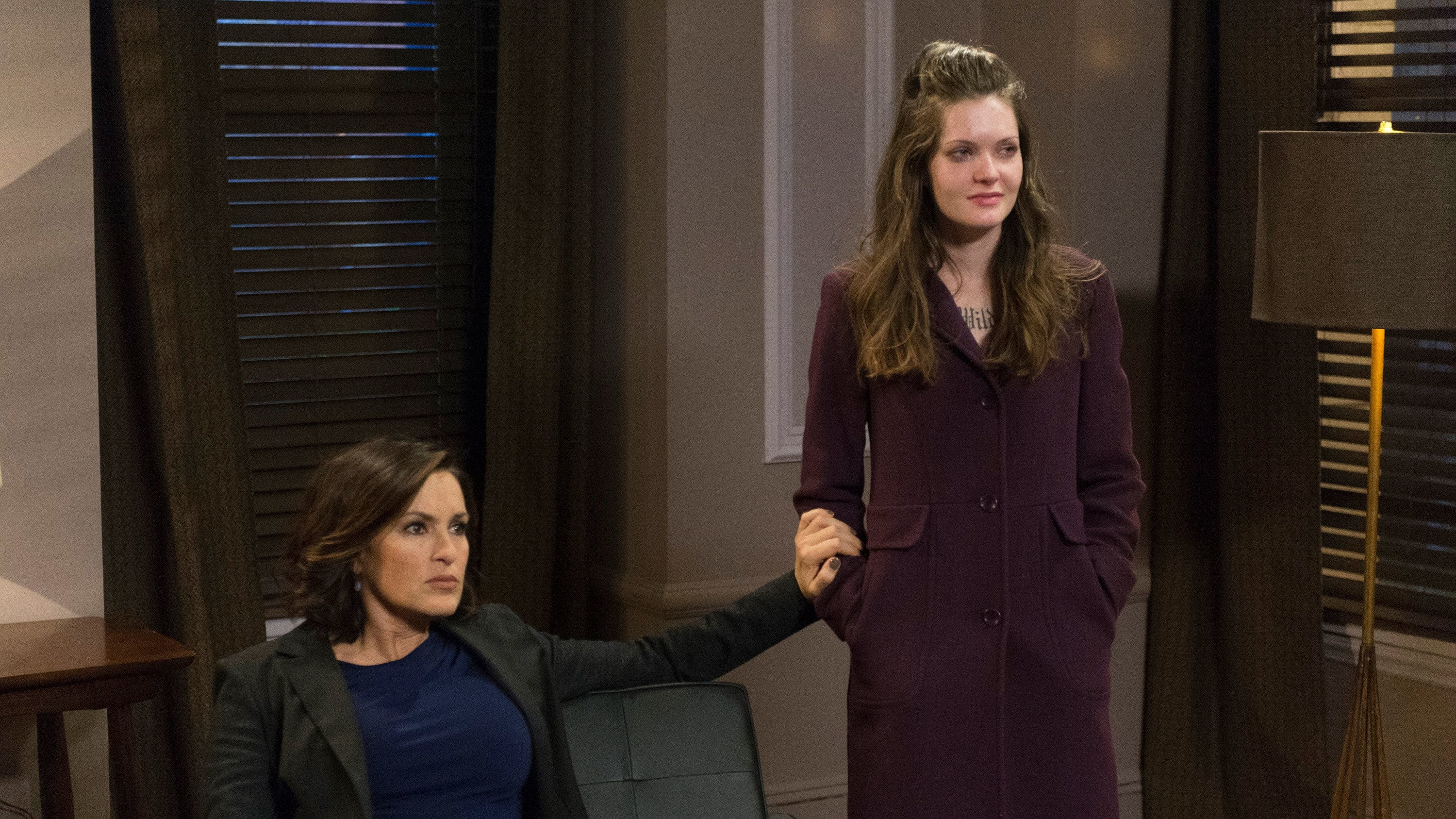 Law & Order: Special Victims Unit - Season 15 Episode 19 : Downloaded Child