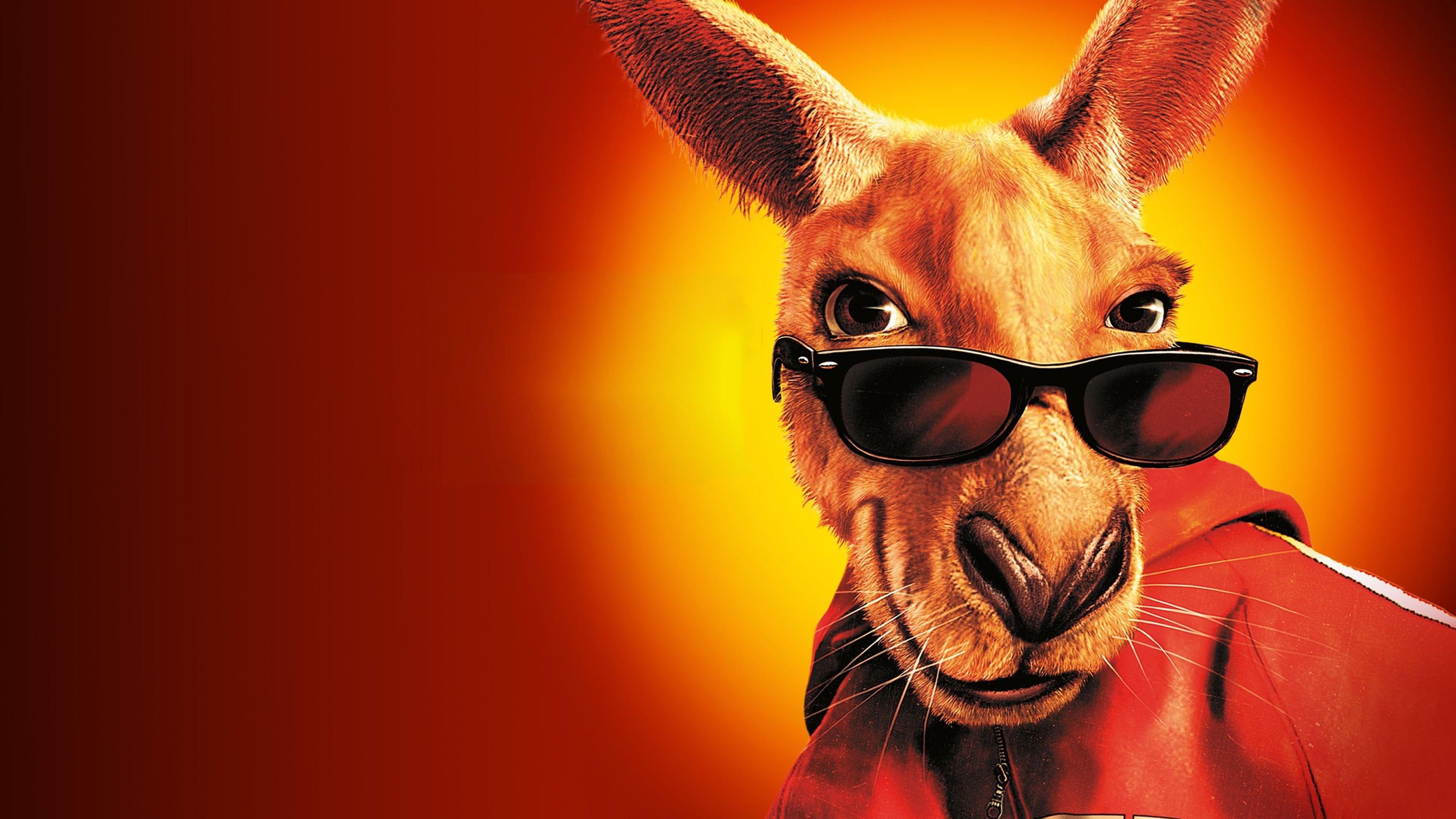 kangaroo jack wallpapers wwwpixsharkcom images