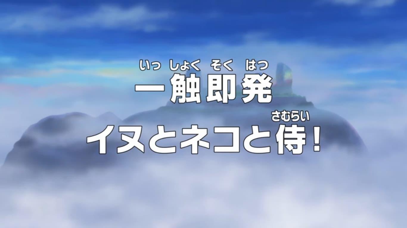One Piece Season 18 :Episode 767  Isshoku Sokuhatsu - Inu to Neko to Samurai!