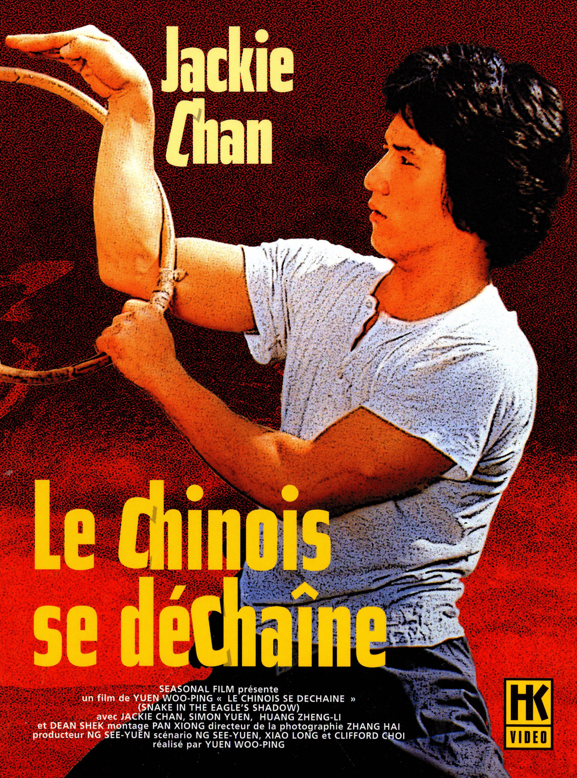 Film le chinois se d cha ne 1978 en streaming vf complet for Arts martiaux chinois liste