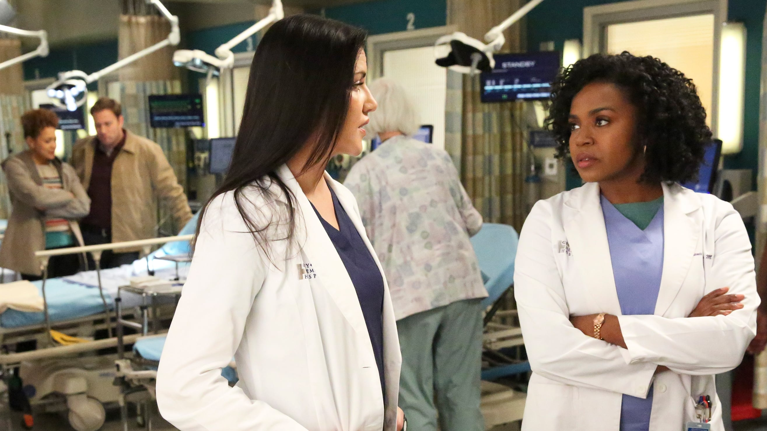 Grey's Anatomy Season 13 :Episode 13  Murphys Gesetz