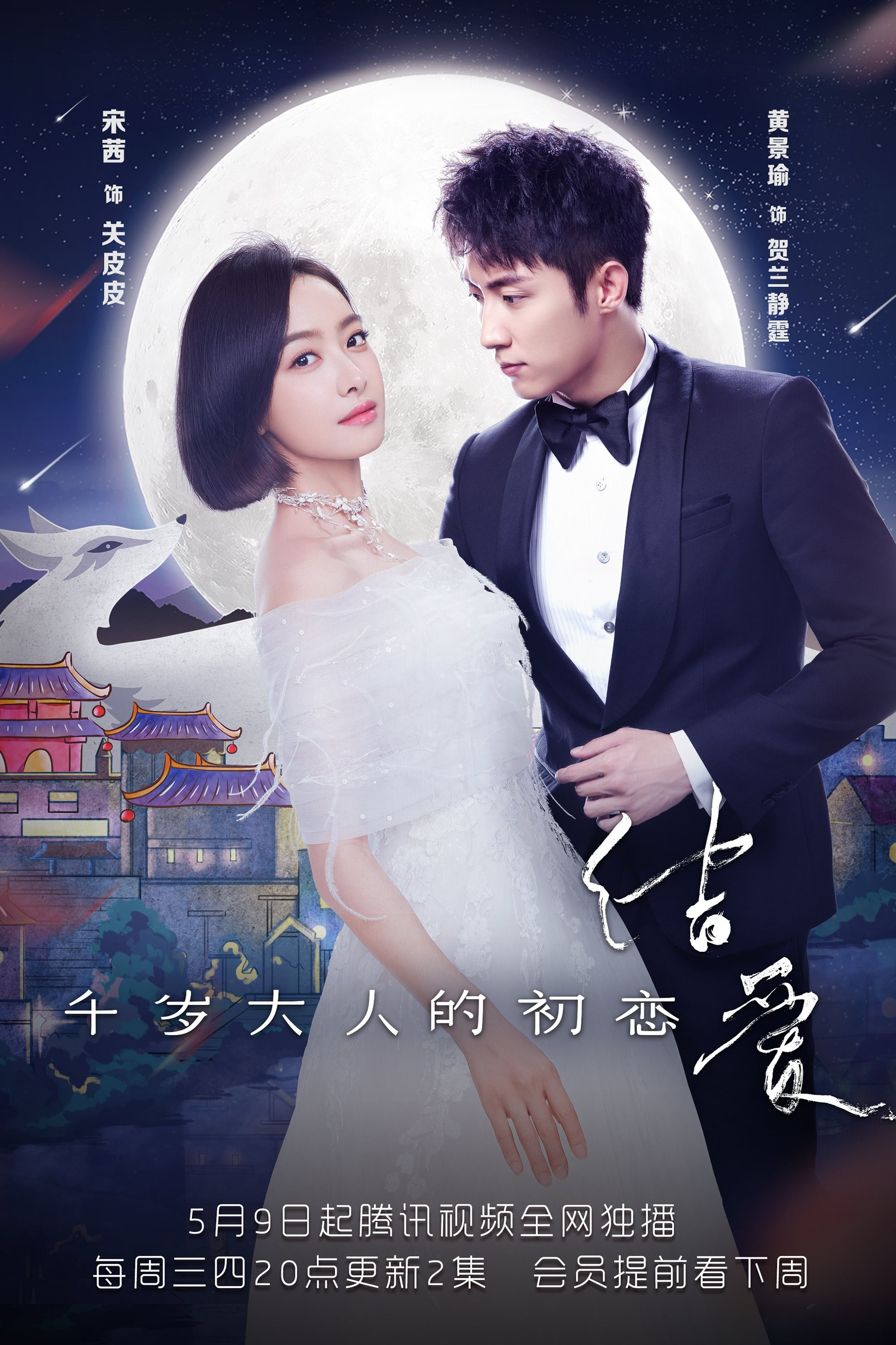 image for The Love Knot: His Excellency