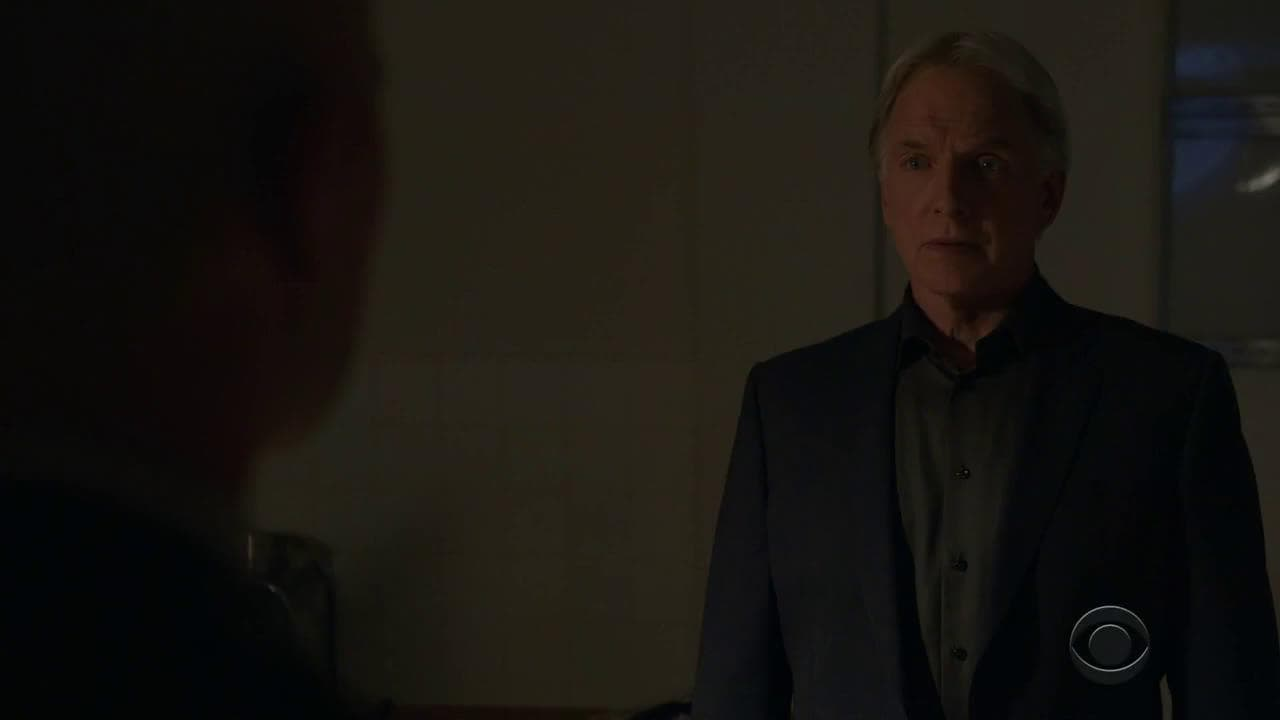 NCIS Season 16 :Episode 8  Friendly Fire