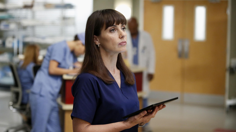 Grey's Anatomy Season 9 :Episode 12  Walking on a Dream