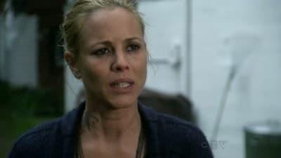 Law & Order: Special Victims Unit Season 12 :Episode 7  Trophy